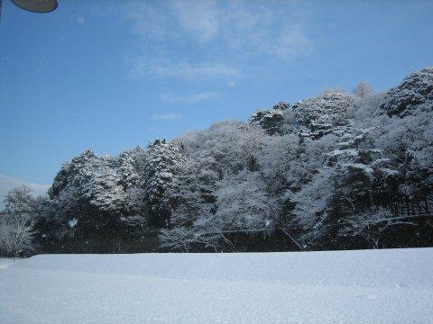 石川 雪1