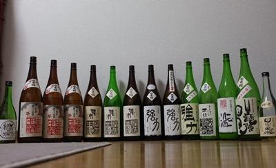 hiokizakura2-1.jpg