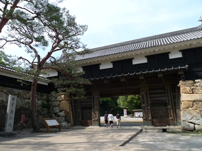 kouchikusaya5.JPG