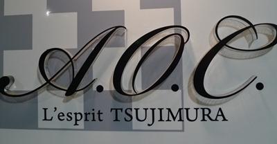 l'esprit tsujimura10.JPG