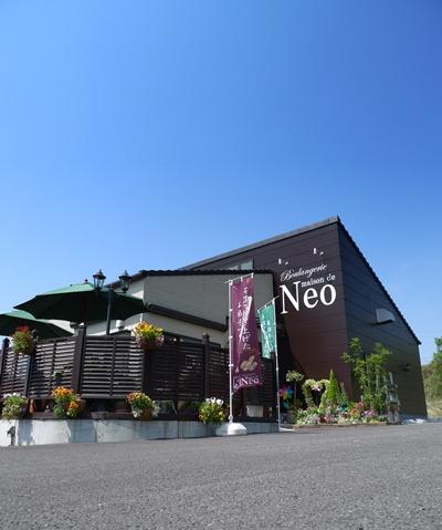neo1.JPG