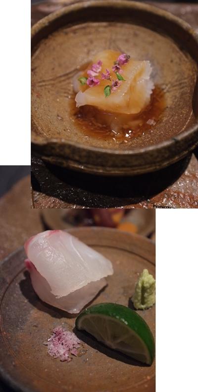 ryugin1-12.jpg