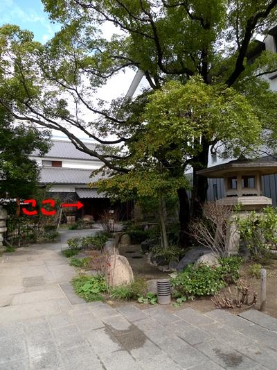 sakabayashi2.JPG