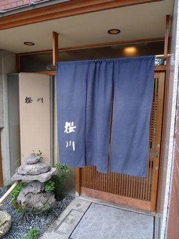 sakuragawa3.JPG