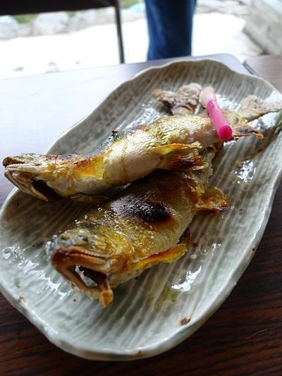 tsukechi3.JPG