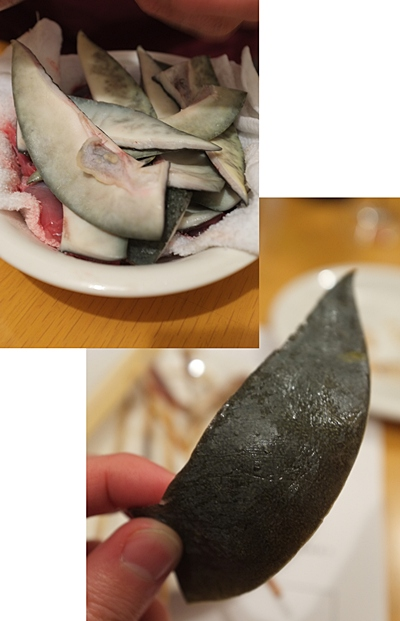 yamaneko9.jpg